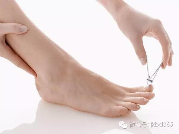 【听健康】低头看看脚吧,它可以反映人的寿命长短!