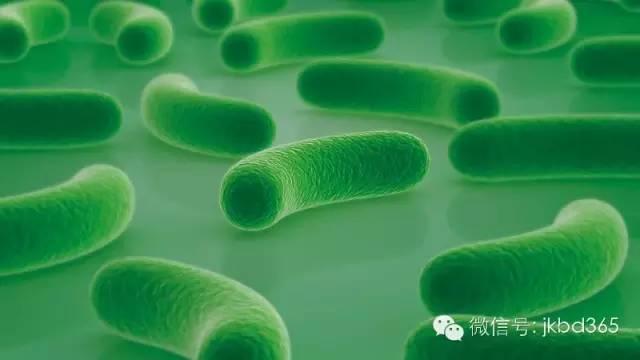 如何正确补充益生菌?