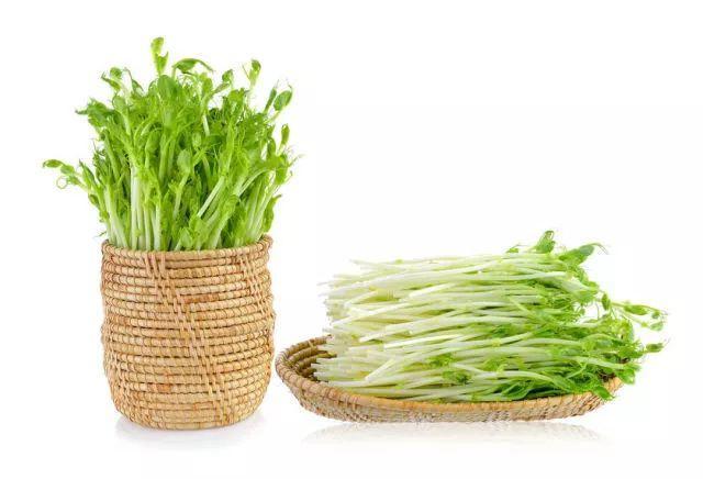 """春天里的""""长寿菜、大补菜、降脂菜"""",一定要多吃!"""