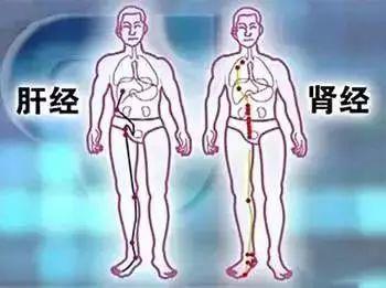 """【听健康】最""""懒""""的排毒方法,只用2招就能清肺养肾!太聪明了~"""