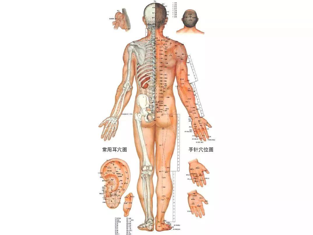 有这6个症状说明你的经络堵塞了!难怪总生病!这样拉伸,让气血活起来