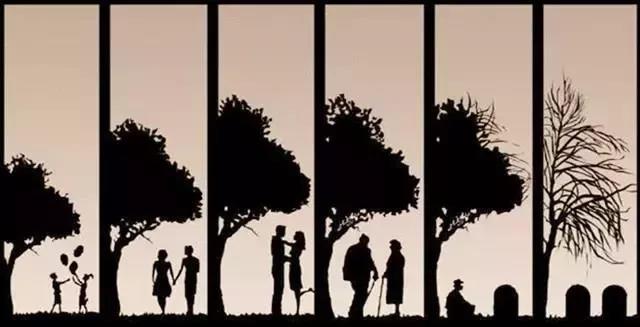 6张图,把你的一辈子安排得明明白白,太精辟了!
