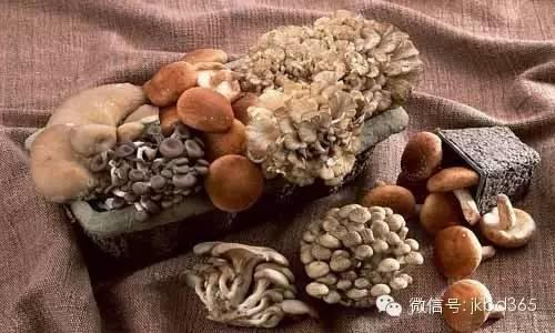 【听健康】蘑菇配上一样东西,效果胜过神仙药!
