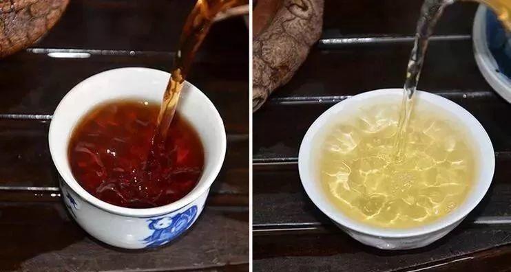 最新研究惊掉下巴:这样喝茶=喝塑料?!爱喝茶的速看