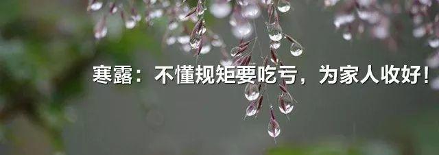 这种植物是万能消炎药,一岁到八十岁都适用!